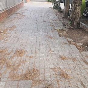 Cs Alcázar de San Juan lamenta que el desinterés del equipo de Gobierno por la limpieza desluzca la ciudad y su feria